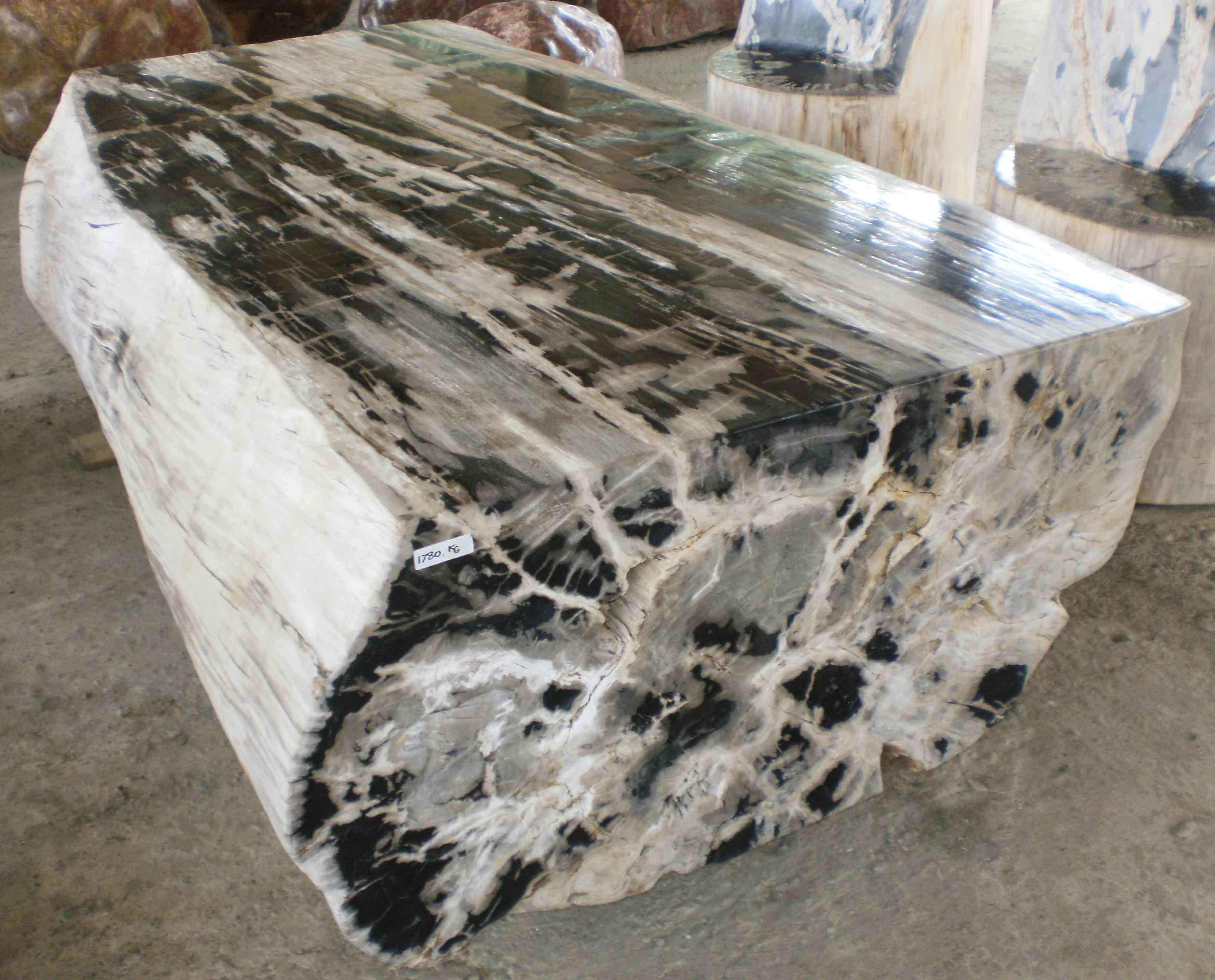 Petrified Wood Furniture Petrified Wood Fossil